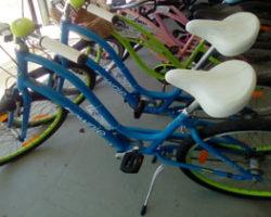 Regular Bikes